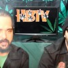 Hemp Beach TV Episode 267 Just Another Awesome Hempisode