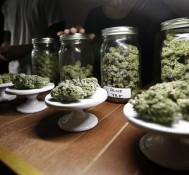 Will Marijuana Use Become Legal Nationwide?