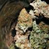 Illinois releases 'Top 10 Tips' for medical marijuana patients