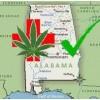 Alabama Senate committee approves medical marijuana bill