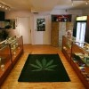 Dispensary rules for pot urged