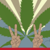 Enough with this silly war on marijuana