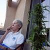 Seniors Are Seeking Out States Where Marijuana is Legal