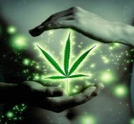 Church Of Cannabis Holds First Service, Marijuana Smoking Nixed Due To Arrest Threats By Indiana Police