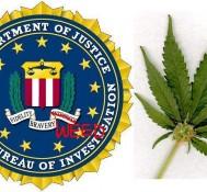 FBI struggling to recruit now that marijuana is legal