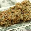 Marijuana supporters unveil plans for California ballot initiative