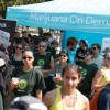 Marijuana marathon races look to break stoner stigma