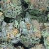 PTSD Patients Sue Colorado Over Marijuana Decision