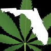 Floridians frustrated by delays in medical marijuana law