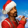 Snoop Dogg looking for stoners for free weed testing at home!