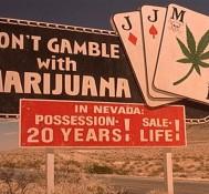 Nevada County marijuana Supes pass outdoor grow ban in 4-to-1 vote