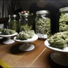 What happens to medical marijuana if recreational use becomes legal?