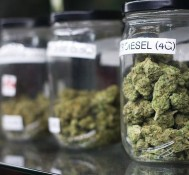Recreational Weed Sales in California Could Be Delayed