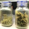 San Diego legalizes recreational pot dispensaries