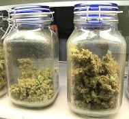 San Diego legalizes recreational pot dispensaries