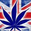 Should The UK Change It's Cannabis Laws?