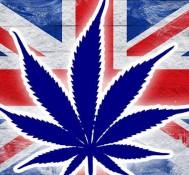 Should The UK Change It's Cannabis Laws?