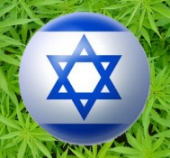 Doctors prescribing marijuana in Israel to double