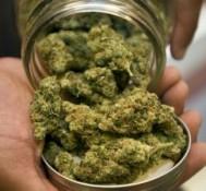 "KOCI station cancels ""Cannabis Community"" medical marijuana radio show"