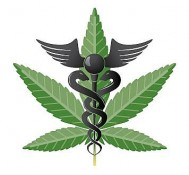 Marijuana may ease multiple sclerosis symptoms.