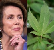 Nancy Pelosi: Medical Marijuana Busts By Feds Of 'Strong Concern'