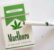 Will Cigarette Makers Jump Into Pot Market?