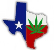 Bill seeks to soften marijuana penalties in Texas