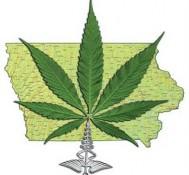 Iowa Senate Democrats back medical marijuana bill