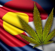 Marijuana Repeal Considered in Colorado, WTF!?