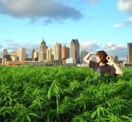 North Carolina Residents Push For Marijuana Legalization