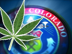 Colorado marijuana tax hbtv hemp beach tv