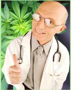 marijuana doc hbtv hemp beach tv