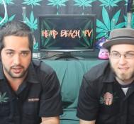 Hemp Beach TV Episode 222 Marijuana Returned to Dealers = Best Day Ever!