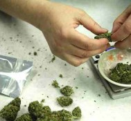 Michigan bill would ease penalties for marijuana possession