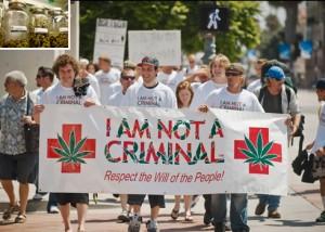 marijuana protest hbtv hemp beach tv