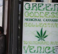 Los Angeles voters approve limiting medical marijuana shops