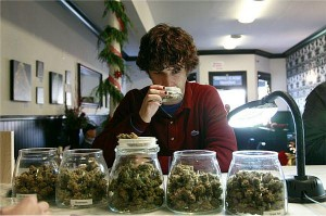 medical marijuana in jars smelling weed hbtv hemp beach tv
