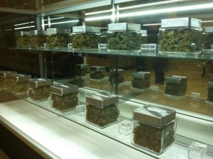 marijuana in jars on shelves hbtv hemp beach tv