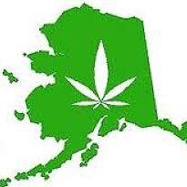 alaska marijuana hbtv hemp beach tv