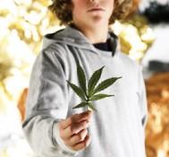 Medical Marijuana for Kids, Some Praise Results