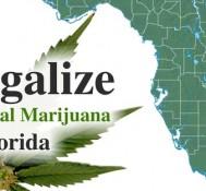 Medical marijuana ballot initiative push begins