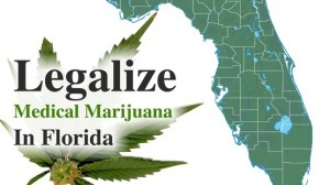 legalize medical marijuana florida hbtv hemp beah tv