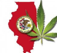 Illinois revamped by new laws & hot-button issues