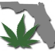 Florida Supreme Court to hear medical marijuana argument of supporters