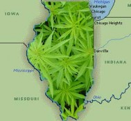 Illinois begins march toward medical marijuana