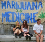 W.Va. Legislature Health panel to hear proposal about medical marijuana