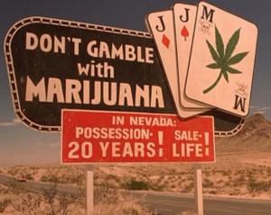 nevada marijuana hbtv hemp beach tv