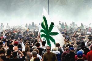 pot law change crowd cheering hbtv hemp beach tv