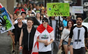 cannabis demonstrators hbtv hemp beach tv