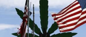 texans marijuana hbtv hemp beach tv